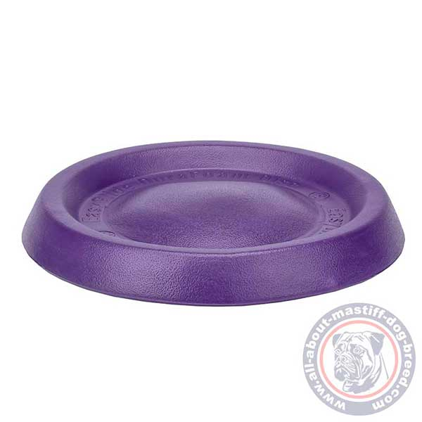 Foam dog disc for water games