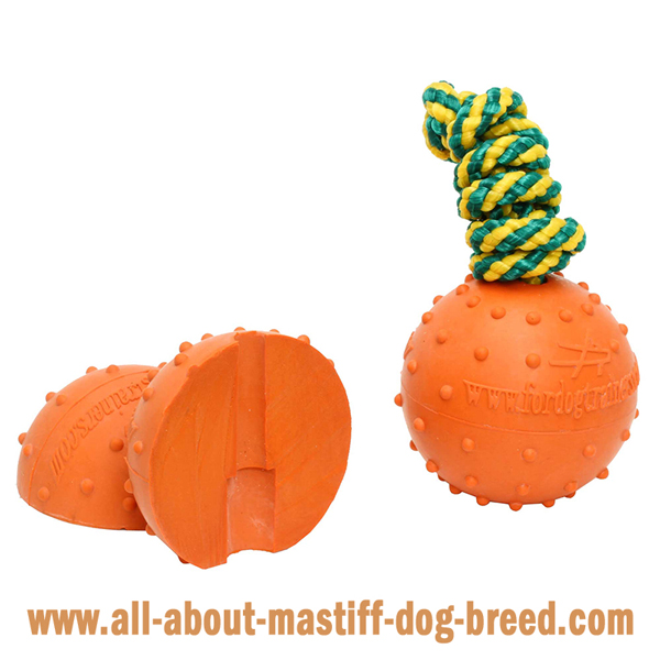 Mastiff Dog Water Ball Made of Dog Friendly Rubber  Material