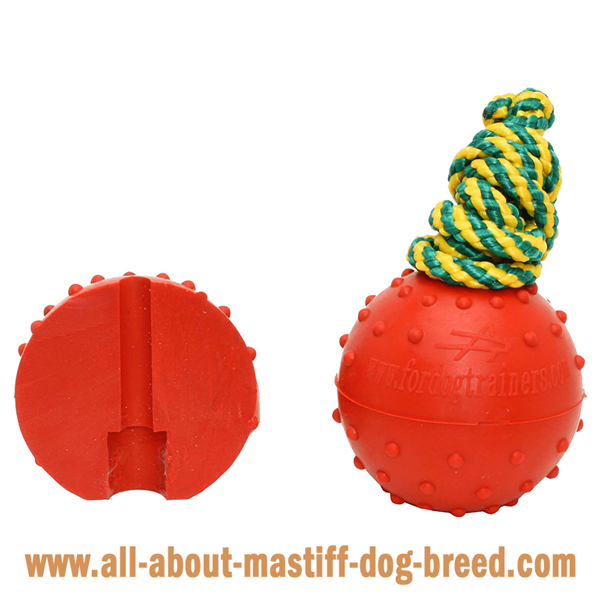 Mastiff Dog Water Ball with Colorful Strong Nylon Cord