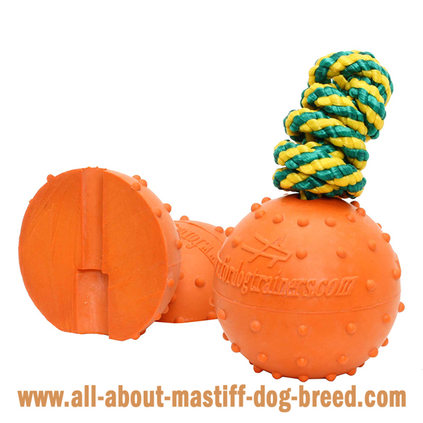 Mastiff Dog Water Ball with Colorful Strong Nylon String