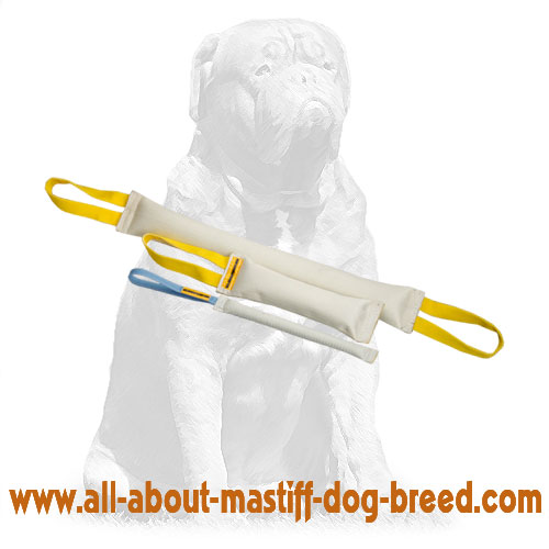 Durable Fire Hose dog set for training