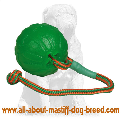 Interactive dog ball made of rubber