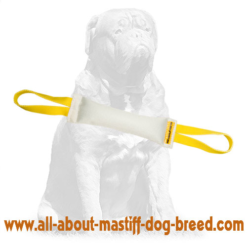 Long-lasting Fire Hose dog tug with natural stuffing