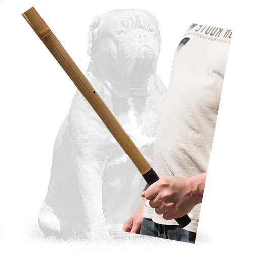 Reliable agitation training dog stick