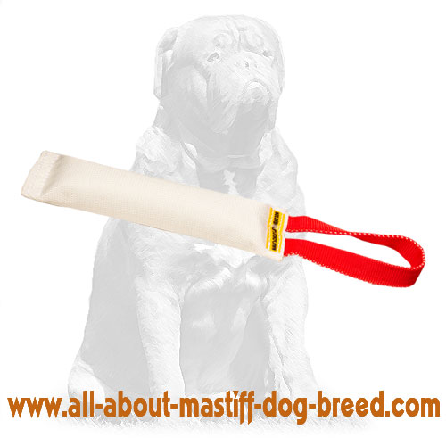 Reliable Fire Hose tug for bite dog training