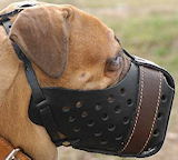 Mastiff muzzle,wire basket dog muzzle for Mastiff,leather dog muzzle for Mastiff,Cane Corso Mastiff,dog muzzles for German Mastiff