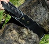 Mastiff collar,big dog collars,leather dog collars,,spiked dog collars,nylon dog collars,custom dog collars,dog training collars