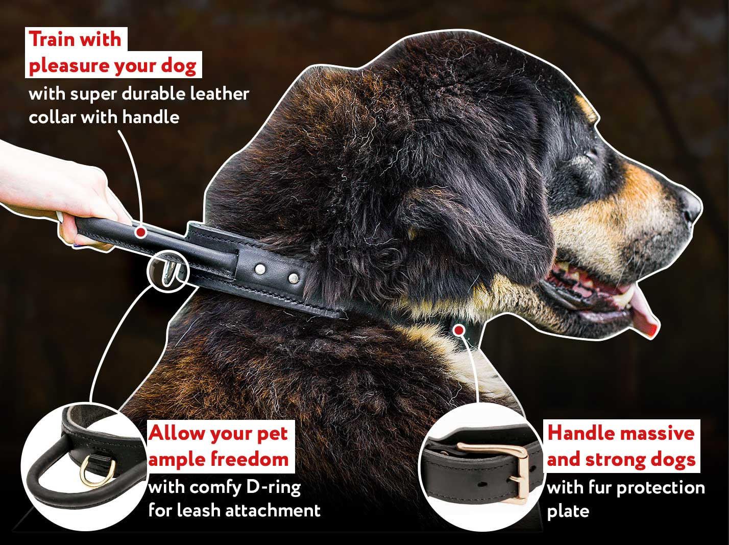 Efficient high quality agitation training Mastiff collar