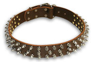 Mastiff Spiked Brown dog collar 20 inch/20'' collar - S44