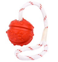 Fun Ball on a Rope for Mastiff (2 3/4 inch)