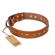 'Spring Flavor' FDT Artisan Mastiff Tan Leather Dog Collar with Old Bronze-Like Plated Engraved Studs 1 1/2 inch (40 mm) wide