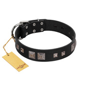 """Foregone Riches"" FDT Artisan Black Leather Mastiff Collar with Old Silver-like Square Studs and Pyramids"