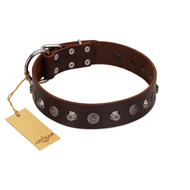 """Dark Chocolate"" Handmade FDT Artisan Brown Leather Mastiff Collar with Studs"
