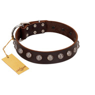 """Lucky Silver"" Designer Handmade FDT Artisan Brown Leather Mastiff Collar"