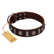"""Spiky Way"" FDT Artisan Brown Leather Mastiff Collar with Silver-Like Decorations"