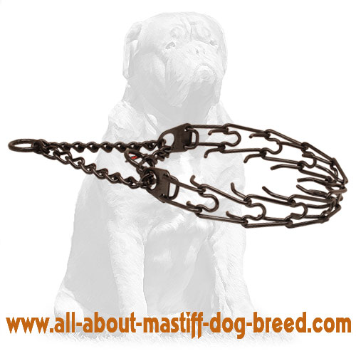 Black Pinch Dog Collar Stainless Steel
