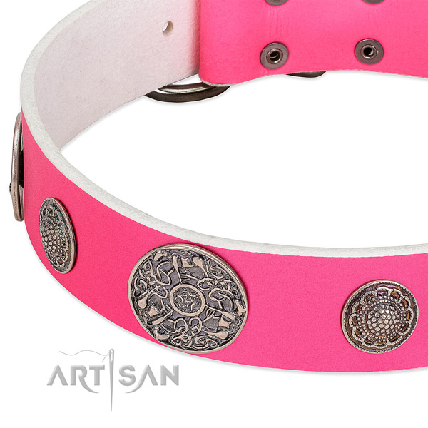 Corrosion proof embellishments on full grain genuine leather dog collar