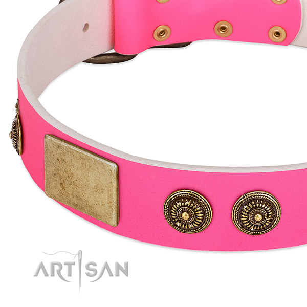 Designer dog collar crafted for your lovely pet