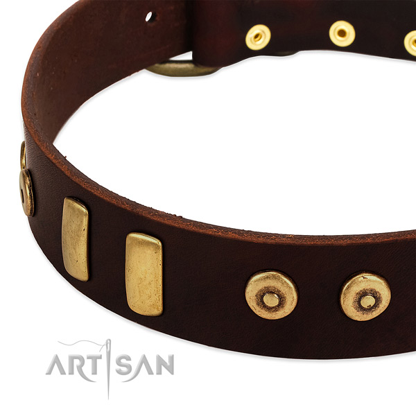 Gentle to touch full grain leather collar with incredible studs for your dog