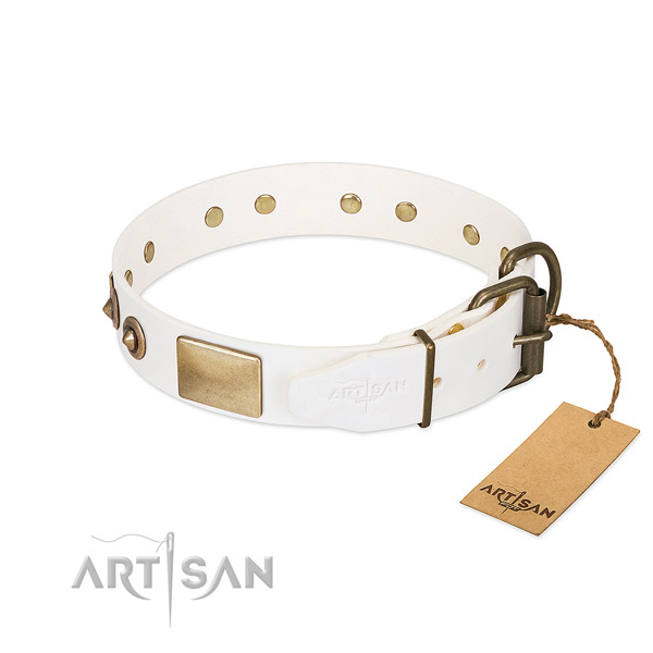 Corrosion proof studs on full grain natural leather dog collar for your canine