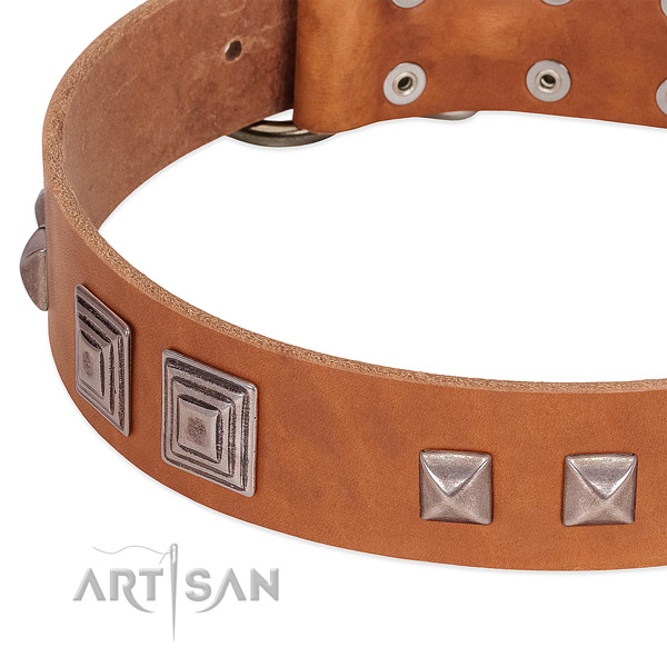 Reliable buckle on full grain leather dog collar for easy wearing