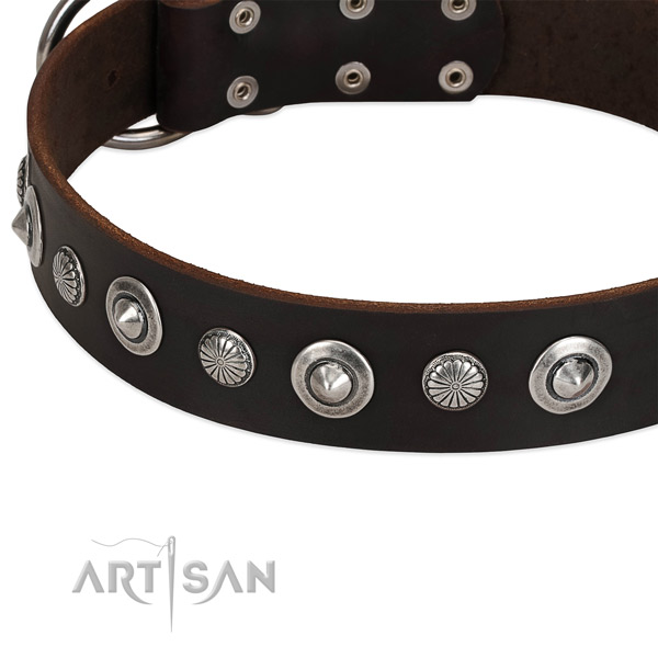 Top notch studded dog collar of top notch genuine leather