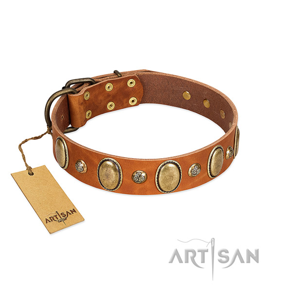 Natural leather dog collar of soft to touch material with exceptional adornments