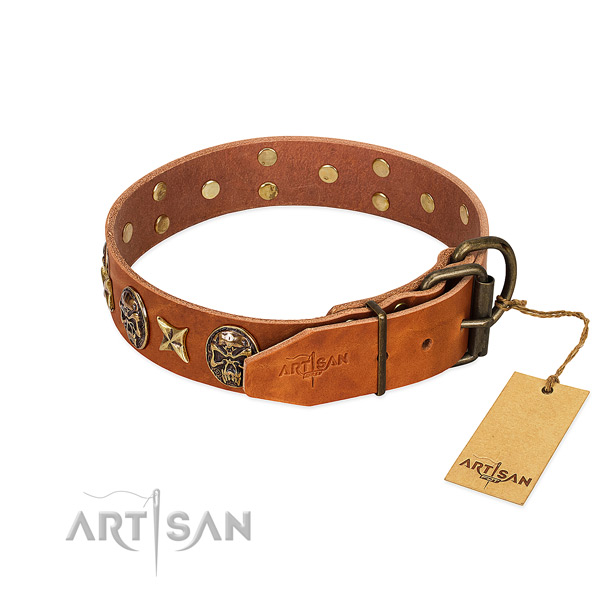 Full grain leather dog collar with durable traditional buckle and adornments