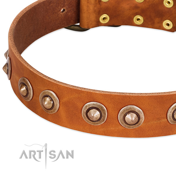 Corrosion proof embellishments on genuine leather dog collar for your doggie