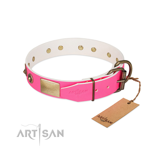 Rust resistant adornments on full grain leather dog collar for your dog
