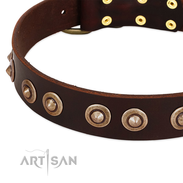 Strong adornments on full grain genuine leather dog collar for your dog