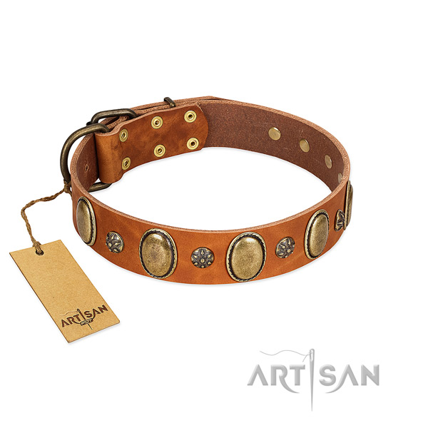 Daily use reliable genuine leather dog collar with adornments