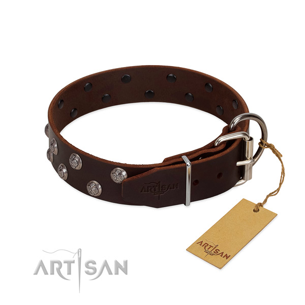 Awesome collar of full grain natural leather for your dog