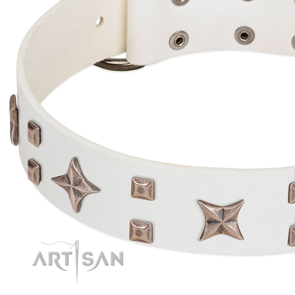Rust resistant hardware on genuine leather collar for stylish walking your doggie