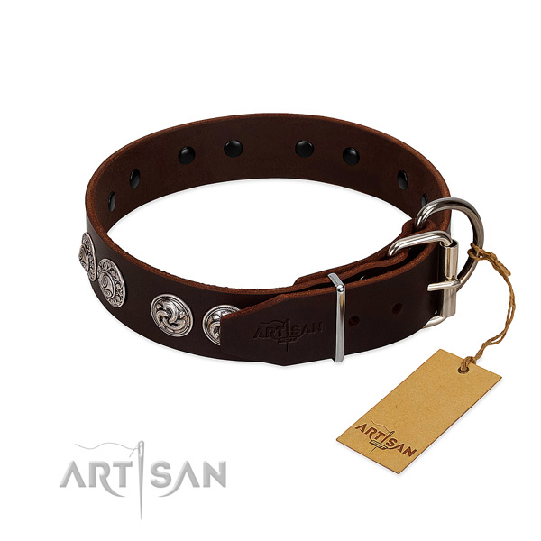 Inimitable leather collar for your pet stylish walks