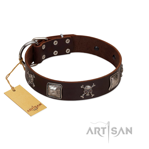 Amazing adorned genuine leather dog collar