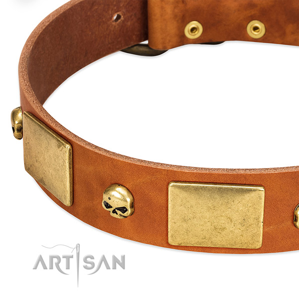 Top rate leather dog collar with corrosion resistant buckle