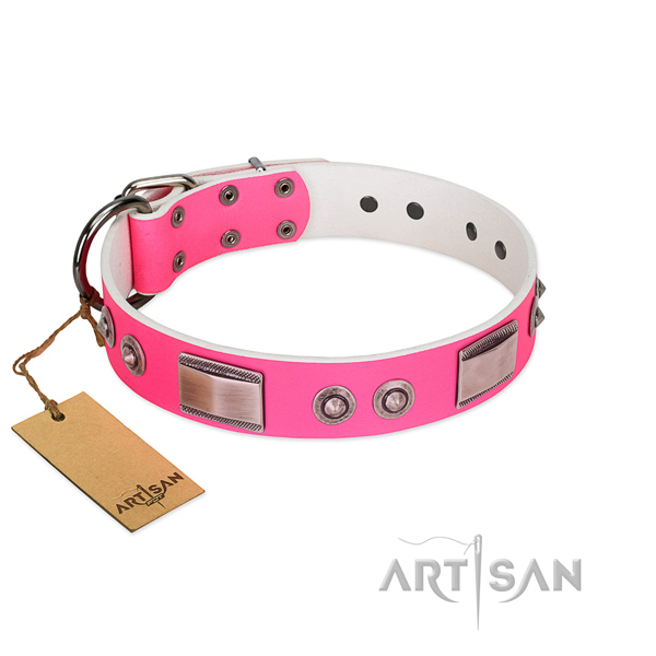 Stunning natural leather collar with adornments for your four-legged friend
