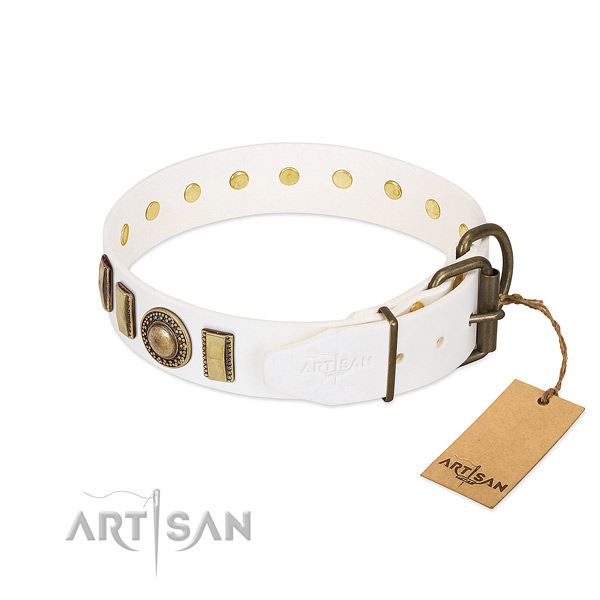 Embellished full grain natural leather dog collar with corrosion proof buckle