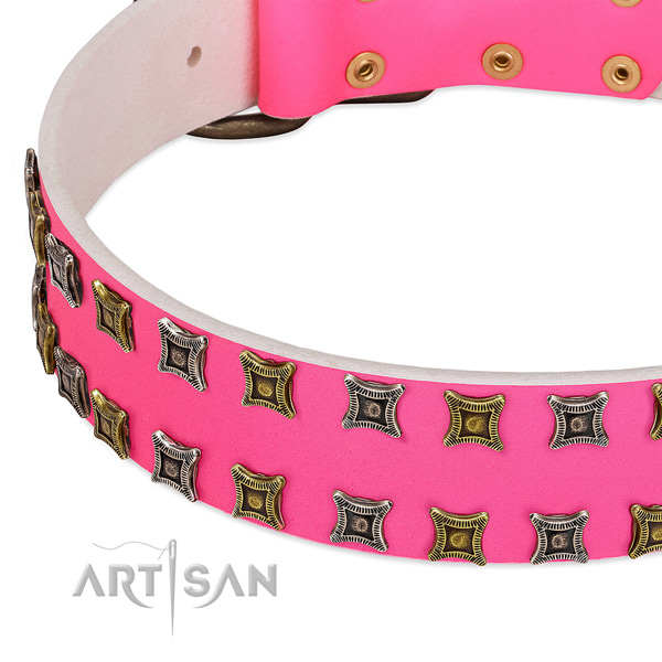 Genuine leather dog collar with embellishments for your stylish dog