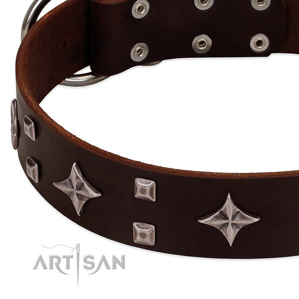Incredible leather dog collar for easy wearing