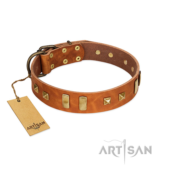 Full grain leather dog collar with corrosion proof hardware