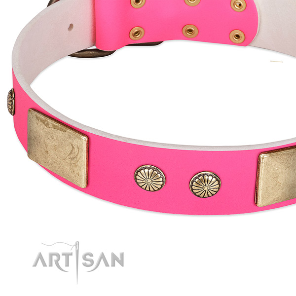 Rust resispinkt decorations on genuine leather dog collar for your pet