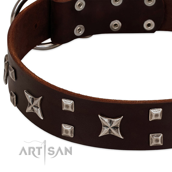 Gentle to touch natural leather dog collar with decorations for everyday use