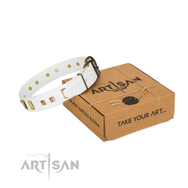 Gentle to touch full grain genuine leather dog collar with adornments for walking