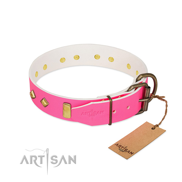 Full grain leather dog collar with rust resistant buckle for handy use