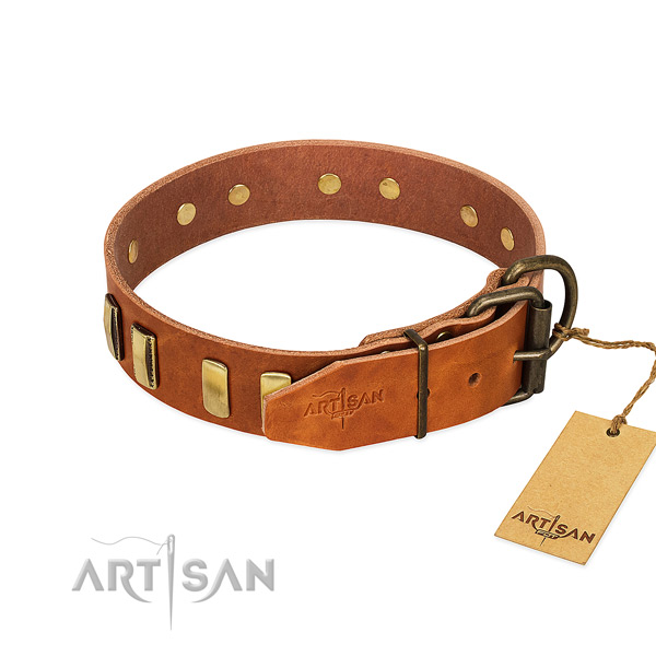 High quality leather dog collar with rust resistant traditional buckle