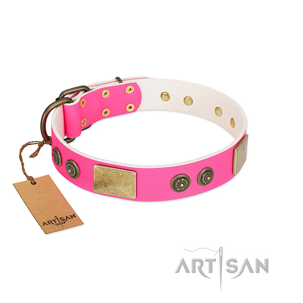 Inimitable genuine leather dog collar for daily use
