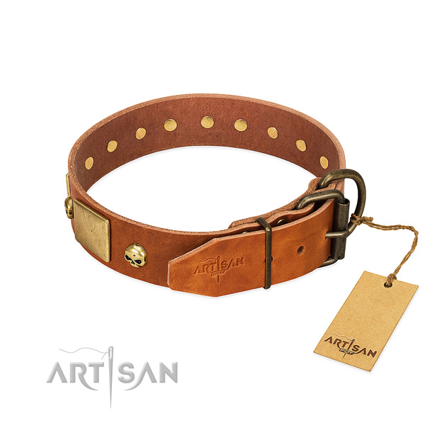 Gentle to touch full grain genuine leather dog collar with corrosion proof adornments