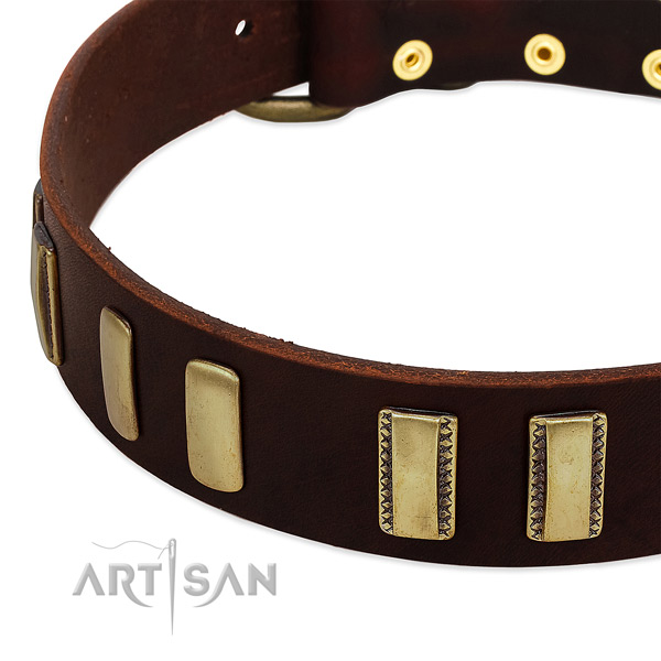 Full grain natural leather dog collar with corrosion proof D-ring for walking